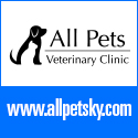 All Pets Veterinary Clinic